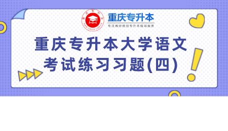 重庆专升本大学语文考试练习习题(四).png