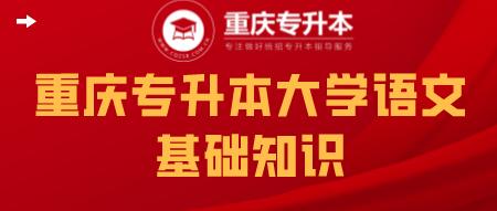 重庆专升本大学语文基础知识.png