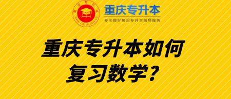 重庆专升本如何复习数学_.png